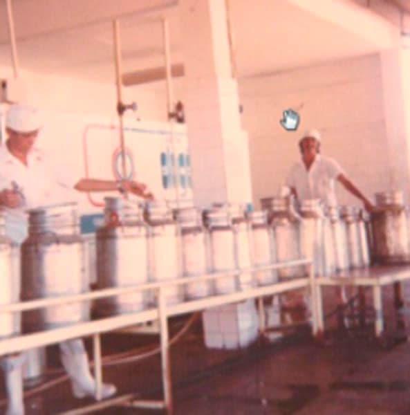 A Cotrifred manteve o posto de resfriamento de leite nas dependências do Colégio Agrícola/ UFSM e em 2002 transferiu sua nova estrutura para a Linha Manfio em Frederico Westphalen, com capacidade de recebimento de cerca de 70 mil litros de leite por dia.